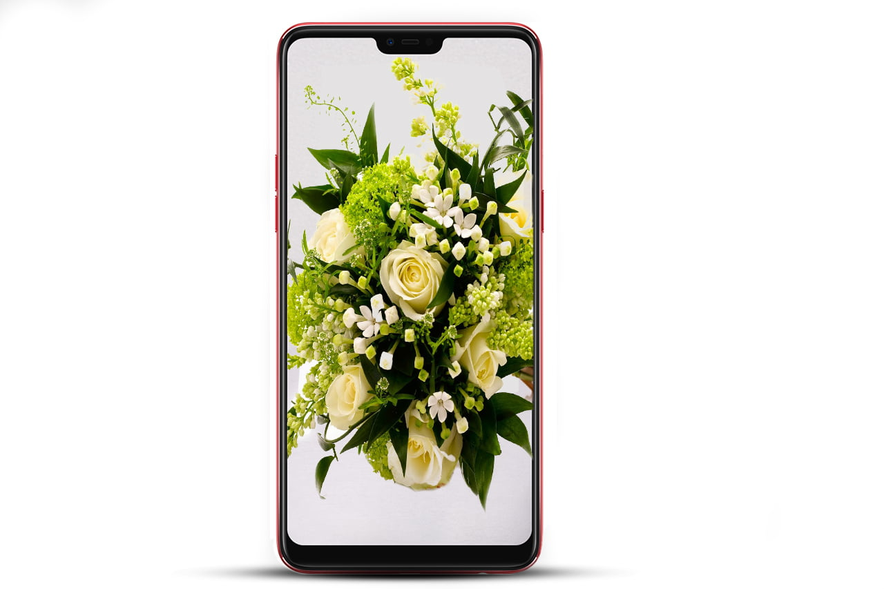OPPO F7 specifications and images